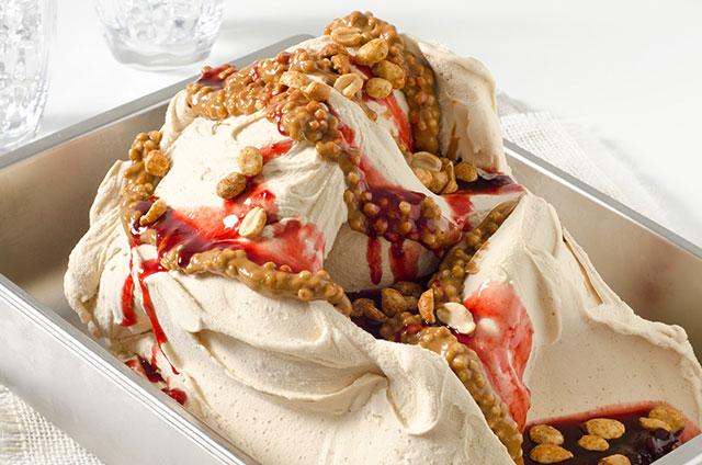 Salted Peanut Ice Cream Totalbase